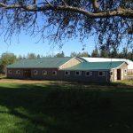 Quiet Company Farm