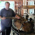 Bill Testu Woodcarvings