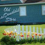 Old MacDonald's Store