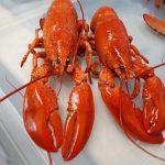 Acadian Supreme Fish Retail